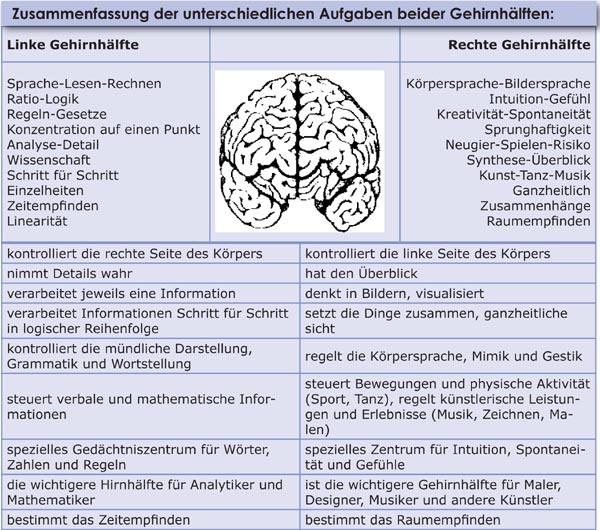 Gehirn Aufgaben linke rechte Gehrinhälfte
