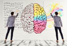 Linke rechte Gehirnhälfte Test