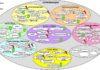 Umfeldanalyse Großprojekte